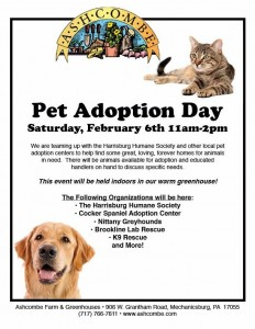 Pet Adoption Day @ Ashcombe Farm & Greenhouses | Mechanicsburg | Pennsylvania | United States
